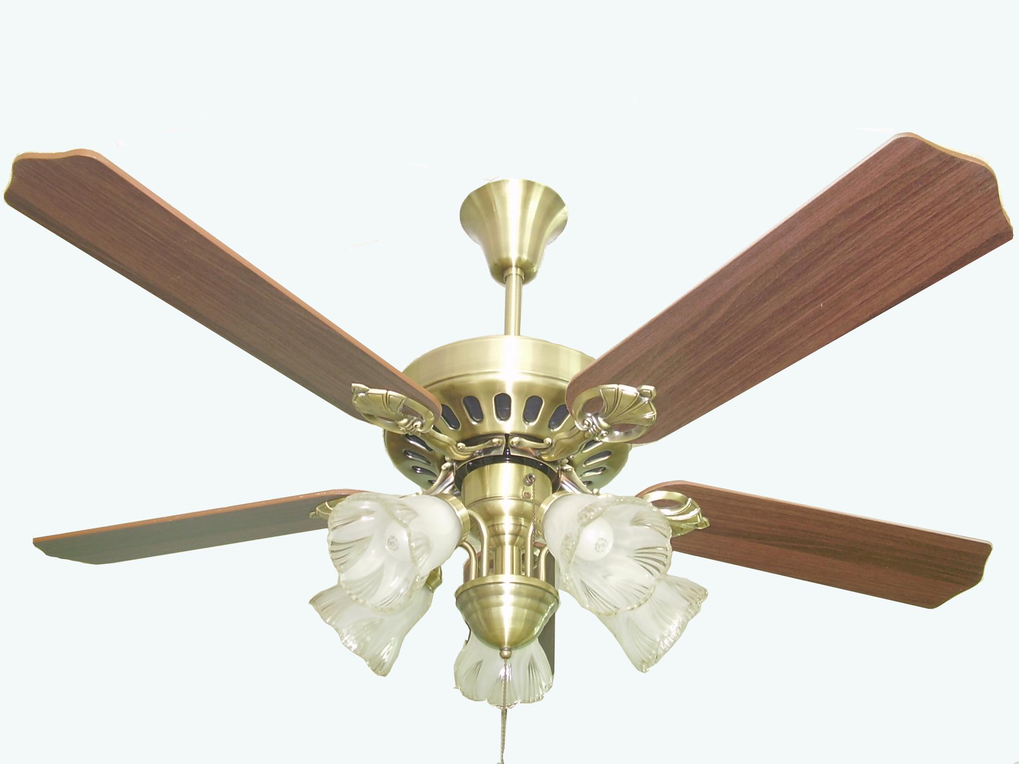 Designer Ceiling Fans Amp Lights Online