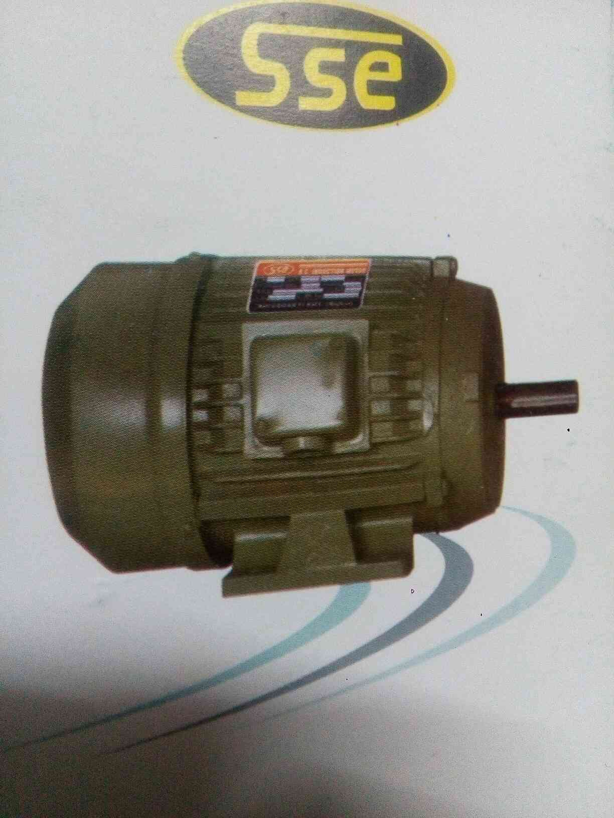 we manufacturing and supplier in Three Phase Electric Motor