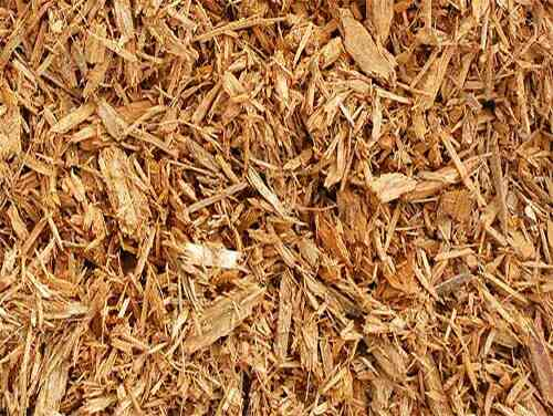 Hardwood Pulp  We are a leading suppliers of Hardwood pulp in Vadodara, Gujarat.  We are a renowned suppliers of Hardwood Pulp in Gujarat, India.