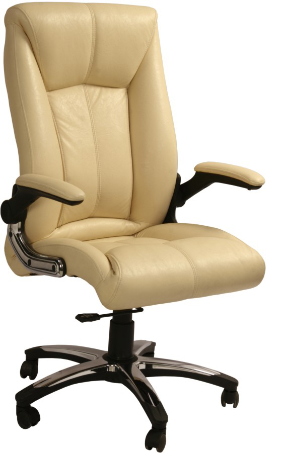 Office Chairs Manufacturers in Delhi  we