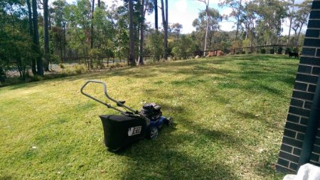 Nath's Lawn Mowing Services are here to help with all your garden needs - by Nath's Lawn Mowing Services, Beaudesert