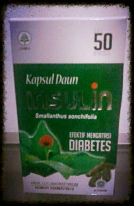 Obat Herbal Kapsul Daun Insulin berguna untuk mengatasi gangguan Diabetes/Diabet/Kencing Manis yang disebabkan tingginya kadar gula dalam darah karena pankreas gagal memproduksi insulin.   Kapsul Daun Insulin mudah diolah dan diserap oleh t - by Obat Herbal Alami, Cilegon