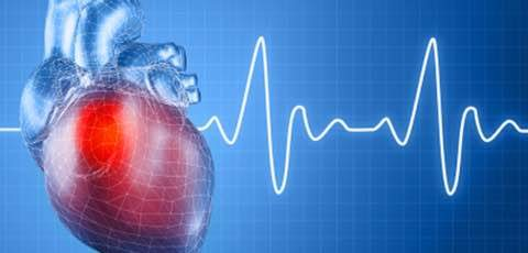 Heart Disease are so common now. Nobody knows when will you get a Heart Attack. Be Prepared. Be in touch with Cardiology Specialist (Cardiologist).  Contact us for any Heart related consultation. - by Cardiology Specialist - Dr. Naveen Bhamri, New Delhi