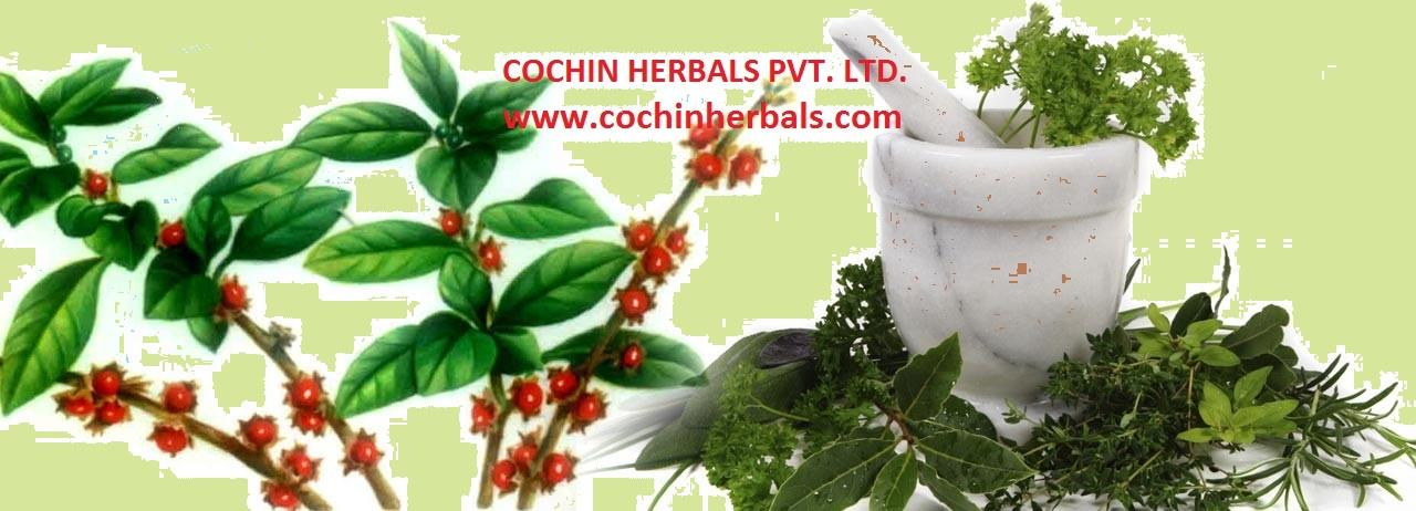 Cochin Herbals provides products that tends to emphasise attaining vitality by building a healthy metabolic system, maintaining good digestion and excretion.    For More Info http://www.cochinherbals.com/index.html  herbal tea manufacturer  - by COCHIN HERBALS PVT. LTD., South Delhi