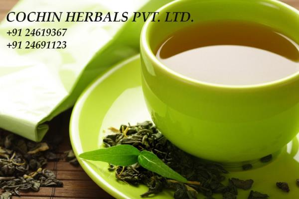 We make use of Ancient Herbal System with Herbal Tea which means minimal procedures and no side effects, maximum results within your treatment of asthma, bp and slimming body etc.   http://www.cochinherbals.com/  herbal memory tea in delhi, - by COCHIN HERBALS PVT. LTD., South Delhi