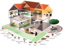 Best Pest Control In Delhi Ncr - by SHREE GANESH PEST CONTROL SERVICES, East Delhi