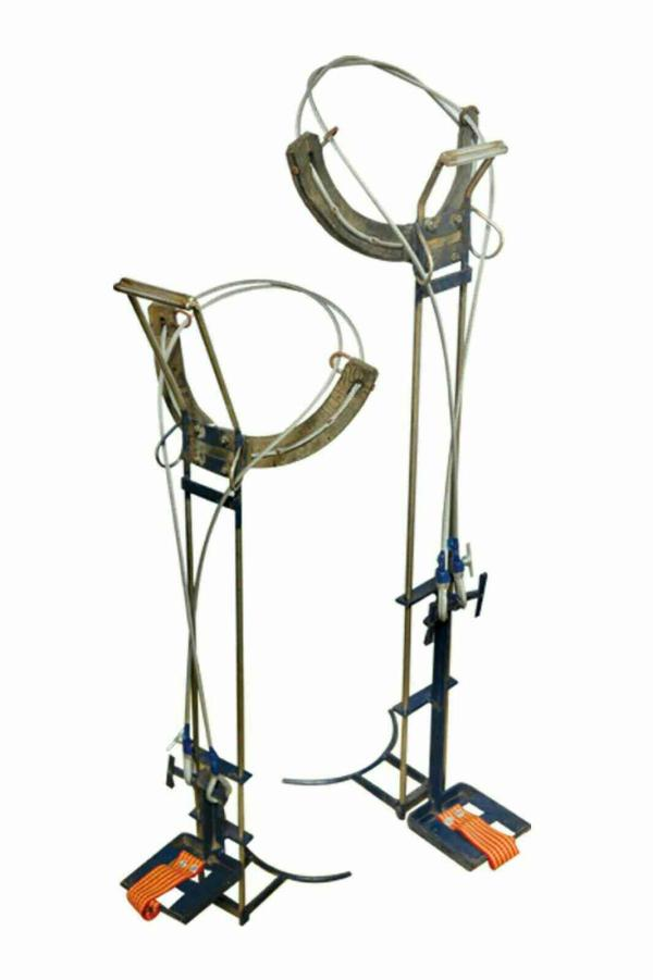 Manufacturers of Coconut Tree Climber. - by Perfura Technologies Pvt Ltd, Coimbatore