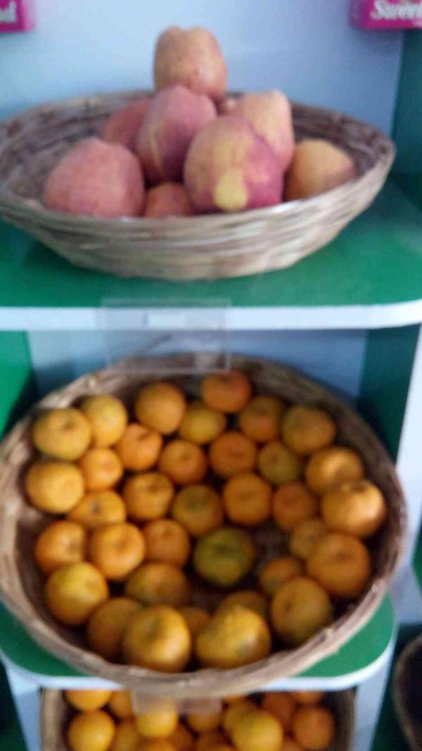 we are leading supplier of fresh vegetables & fruit in Rajkot  - by Green World fruit & Vegetables, Rajkot