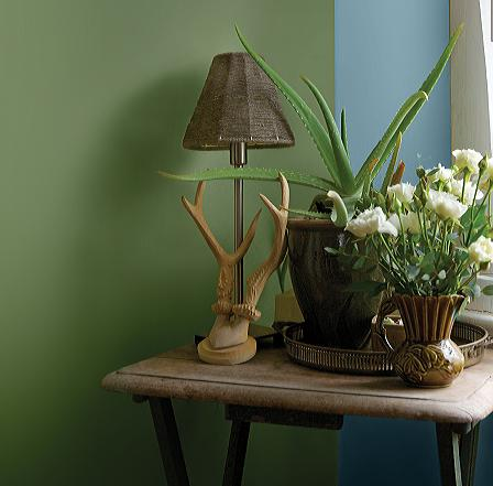 The Nature Lover style uses woodsy & lush green colours with a Quality Paints. Call now - by Quality Paints, Pune