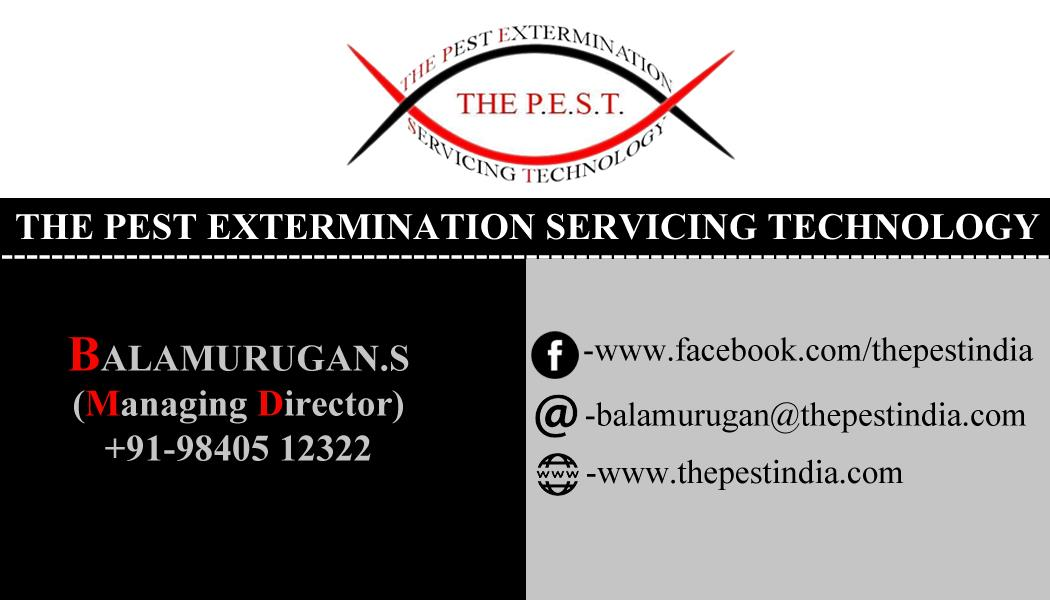 Contact us for all kinds of pest solutions. - by The Pest, Chennai