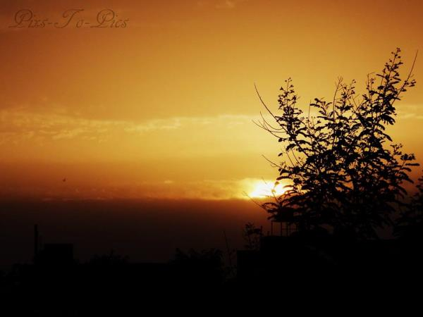 "We can only appreciate the miracle of a sunrise if we have waited in the darkness.""With each sunrise, we start anew""  - by Pixs To Pics, Jaipur"