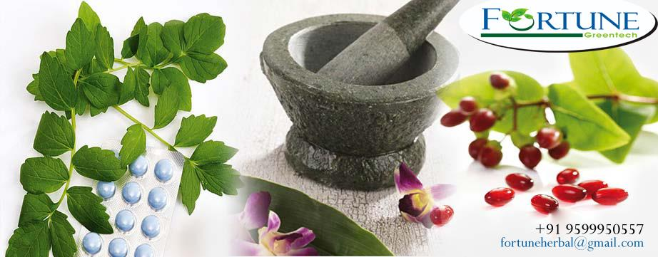 we are dedicated to provide practitioners with herbal products of highest quality and purity read more detail.http://www.fortunegreentech.com/  herbal vitality products dealer in north india,  herbal vitality products dealer in delhi,  herb - by Fortune Green Tech, Central Delhi