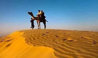 Camel Safari in Dunes jaisalmer - by camel safari dunes camp sam resort, Jaisalmer