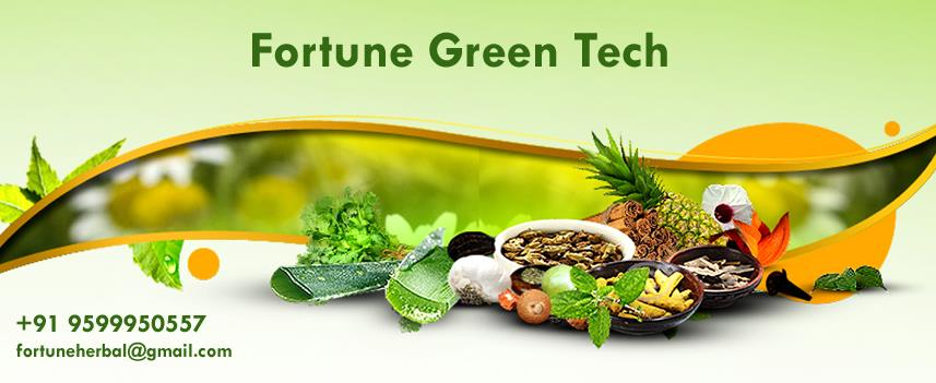 Fortune Green Tech identifies few herbs from traditional Indian Ayurveda - Science of life & introduces these herbs in their product range of Ayurvedic Medicine, which are internationally called as Dietary Supplements & Natural Supplements. - by Fortune Green Tech, Central Delhi