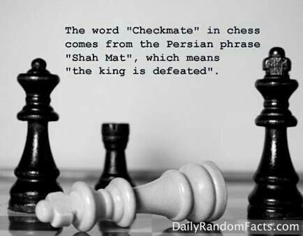 Chess Facts Credits : Dailyrandomfacts.com - by Chess, Delhi