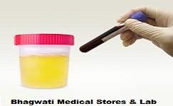 Testing Lab of Blood, Urine, Saliva, Sputum, Faeces, Semen and other bodily fluids, as well as tissue.  - by Bhagwati Medical Stores & Lab- Vaidh Ji, Bikaner