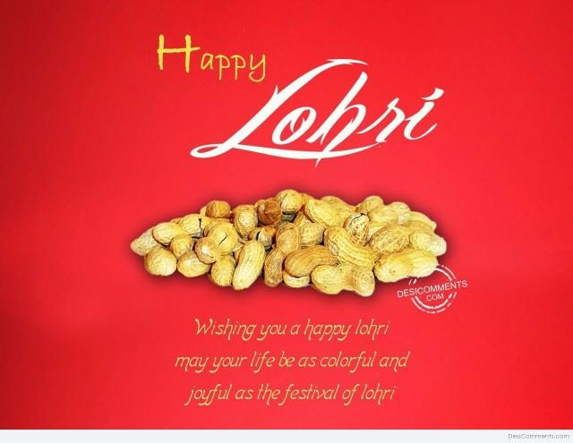 superior braidings wishing you very happy lohri.... we deals in ropes and horse and dogs leads in Kanpur - by Superior Braidings, Kanpur