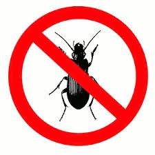 we kill pest and make customer happy - by Jukaso Pest Control Pvt Ltd | 7838381536, Greater Noida