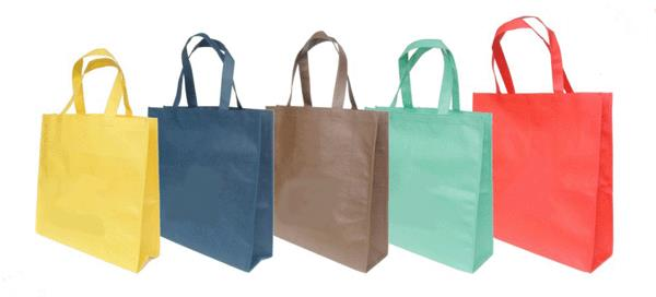 Manufacturer of Non-Woven carry bags - by Ashish Enterprises, Delhi