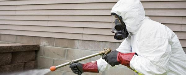 we are using non hazardous as prescribed by WHO chemicals and equipment to remove pest, termite, rat , rodents , bed bugs e.t.c in delhi ncr location  pest control services in noida pest control services in greater noida pest control in noi - by Jukaso Pest Control Pvt Ltd   7838381536, Greater Noida