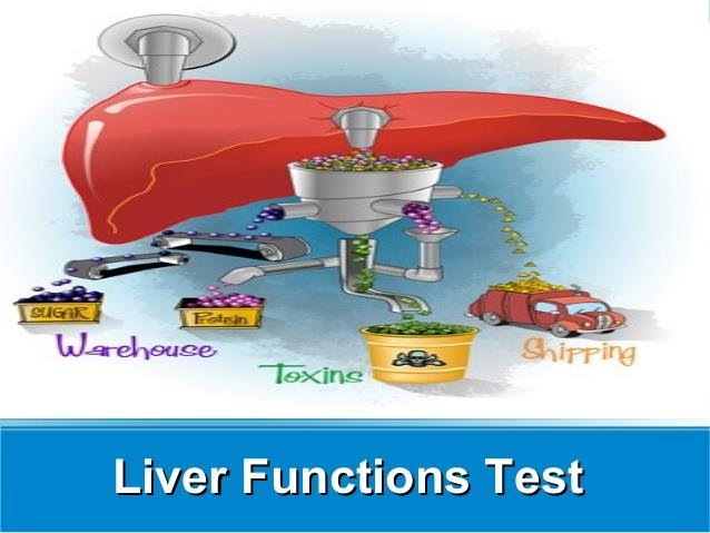LIVER FUNCTION TEST RS. 500  TOTAL BILIRUBIN - by Hicare Diagnostic Center, Chennai