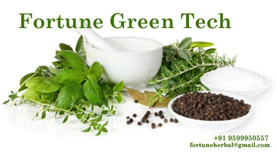 Fortune Green Tech products are manufactured in sophisticated and modern manufacturing unit. Each member of the unit works with one motto and objective to provide products of therapeutically effective and of standard. Ayurveda believes in n - by Fortune Green Tech, Central Delhi