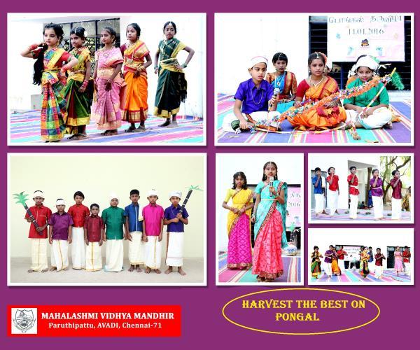 PONGAL FESTIVAL - by Mahalashmi Vidhya Mandhir, Chennai