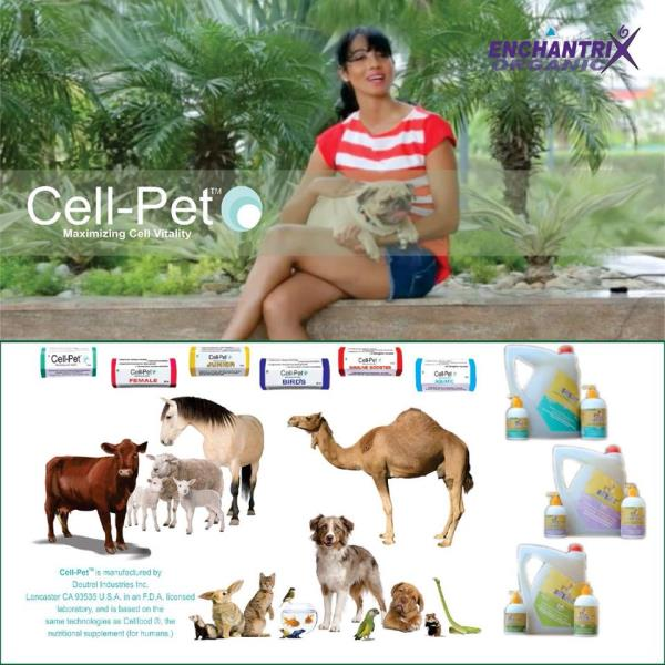 Good News from Mumbai, A dog with very low platelets & almost on last stage. The Vet has recommended him #CellPetImmuneBooster which has worked as a life saver for the dog. It increased the platelets in a very short span of  3 days  - by ENCHANTRIX ORGANIC PVT LTD, Delhi