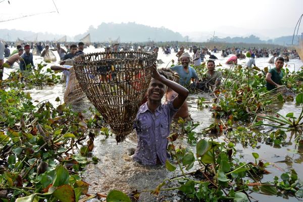 Community Fishing in Assam - by Safar Cab, GUWAHATI