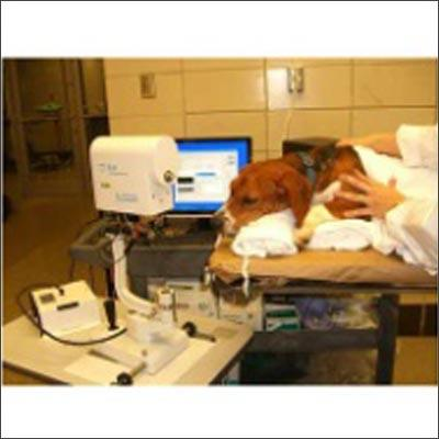 Dogs Clinic and Operation Theater Product Description: Our pet clinic in Kota has a well planned and equipped infrastructure. At our dog clinic, we have all the basic amenities and facilities like operation theatre, waiting room, examinatio - by Pet Care Clinic, Kota