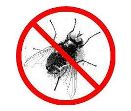 Fly Trap Units  We provide a number of products and services including pheromone lures, fly screens, insecticidal treatments and electric fly control units to assist companies implement insect control plans.Our range includes: Electronic Fl - by Velcare International, Bangalore