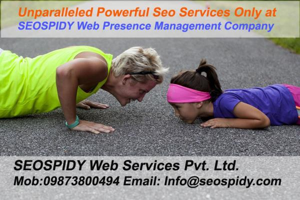 Professionals Working at seospidy will take care of every aspects from website structuring, onpage optimization, Keyword research, Hummingbird Algorithm and Core Algorithm updates including Panda & Penguin, White Hat Seo Strategy, Inbound L - by 1st Page Seo Ranking Results  09873800494, Delhi