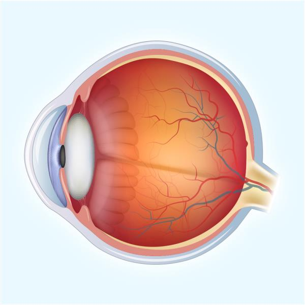 """Our Hospital is the complete #EyeCareCentre has most Efficient, Dedicated and Competent Super Speciality Consultants with facilities for """"Advanced Cataract Surgery"""". - by Dr Agarwal Eye Hospital 