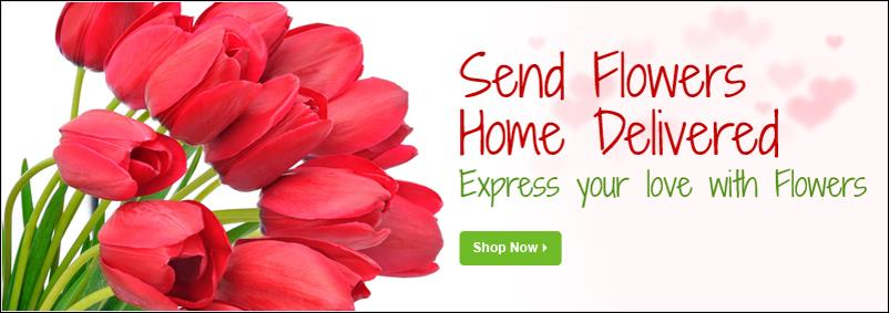 Flat Rs 100/- OFF Use Coupon Code SHIP2MYID  yupflowers delivery online flowers, cake, chocolates & teddies more than 150 delivery cities Across India. we have same day delivery Mid-Night delivery. we deliver fresh flowers & cakes with free - by Yup Flowers, Indore