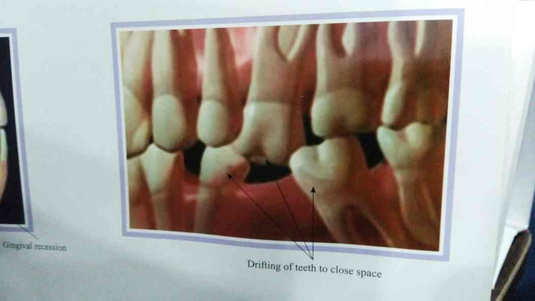 best dental service providers in jayanagar 5th phase - by total tooth care, Bengaluru