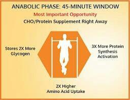 Anabolic phase 45minutes window - by Anabolic Nutition, Beside Mahalaxmi Theatre Kothapet Hyderabad