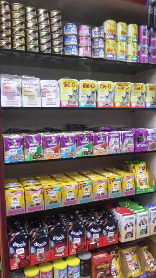 Dogs & Cats wet pouches avaliable in many brands Like for Cats ..... Royal Canin , Sheba , Me-o , Whiskas  Dog's .... Pedigree , Jer High , Drools And Cuddle ..... With Complete Nutrition ..  - by Khushi Pet Shopee, Pune