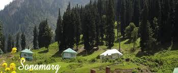Holiday destinations in jammu - Sonmarg - by Holiday Inn Tour & Travels, Jammu