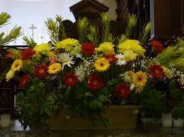 Special flower arrangements in jammu - by My Shop, Jammu
