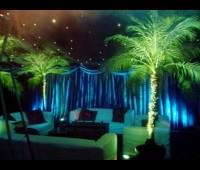Theme Events  Trived Event Management Co. specialize in making your themed event one to remember. We can completely transform a room using theme props, lighting and state of the art technology. Using a specialized crew we can create a party - by Trived  Event Management, Jammu