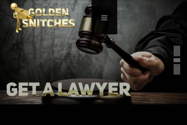 Golden Snitches - by Golden Snitches, Toronto Division
