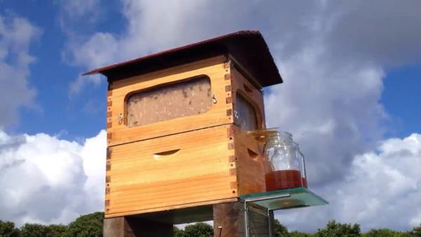 A Byron Bay man has revealed how his innovative beehive design, which he worked on quietly for years, scooped around $16.8 million in advance orders to more than 130 countries when he launched a crowd funding campaign. - by Baron Design, Chennai