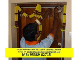 pest control services - by Pest Professional services, Bengaluru