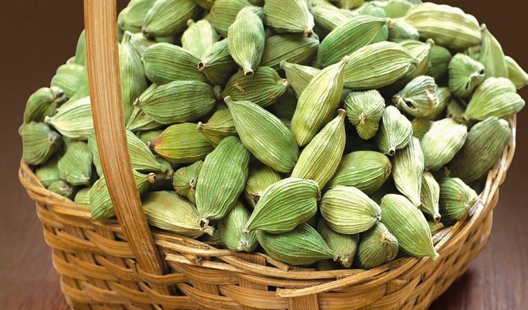 We are Exporters and Suppliers of Premium Green Cardamom.  For more info:  http://www.suchiindustries.com/ - by Suchi Industries, Coimbatore