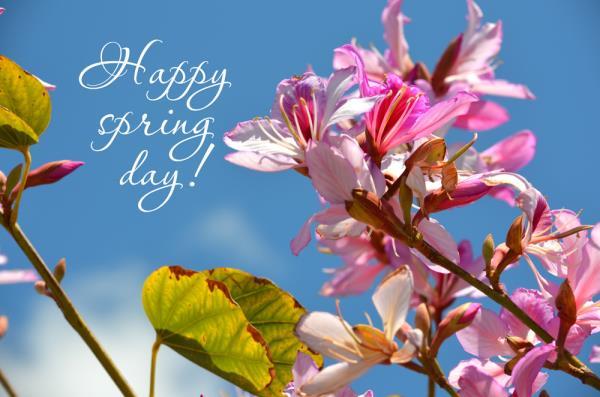 Happy Spring Day - by Hotel Kangra Rodeway Inn, Kangra