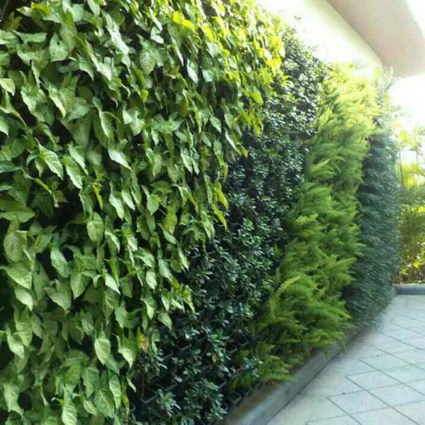 Vertical garden Rsenterprises12b@gmail.com  Rajesh kumar  - by Vertical Garden Manufacturer, New Delhi