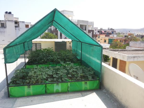 Organic Seeds In Ganapathy, Coimbatore  Organic Manures In Ganapathy, Coimbatore  Grow Bags For Terrace Garden  In Ganapathy, Coimbatore   - by Smart Grow, Coimbatore