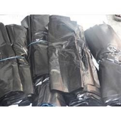 Garbage Bags  Holding expertise in this field, we are offering to our valuable clients a premium range of Garbage Bag. We manufacture this bag by utilizing the high grade raw material under the supervision of our skilled professionals. In o - by Bhargava Poly Packs, Mohali