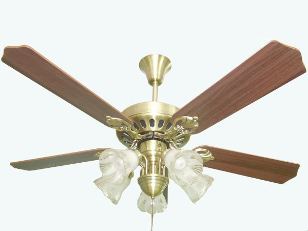 Introducing an Exclusive Collection of the Best Ceiling Fan Design and Performance. Featuring Elegant Designs Created from the Finest Materials Delivering Exceptionally Quiet and Air Movement and Performance. - by Designer Ceiling Fans & Lights Online | Vizag, Visakhapatnam