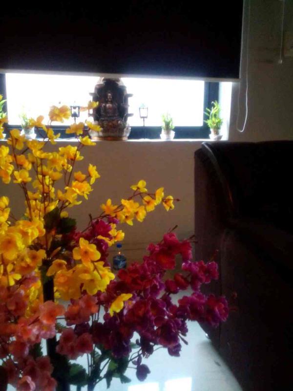 aroma body spa in vijay nagar - by Daksh Thai Spa & Massage Center, Indore